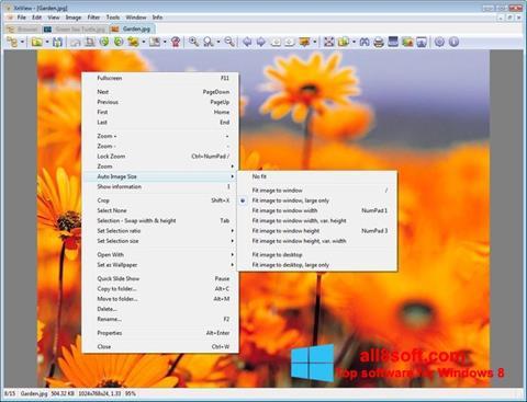لقطة شاشة XnView لنظام التشغيل Windows 8