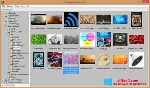 لقطة شاشة IrfanView لنظام التشغيل Windows 8